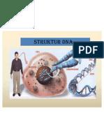 DNA (Analis Kes)