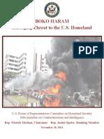 Boko Haram Report