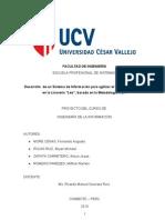 Informe Final de Ing. ion