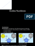 Baixado - ácidos nucleicos