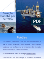 Poluição Marinha por petróleo2