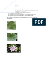 Quiz- Monocots and Dicots