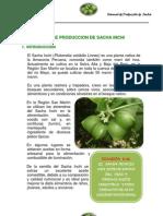 Manual de producción de Sacha Inchi