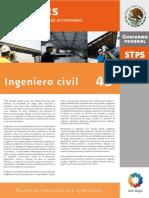 Perfil45Ingeniero Civil