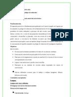 Proyecto Final de Lengua y Su Didactica