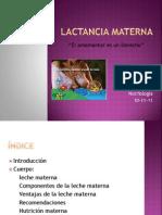 Lactancia materna 2