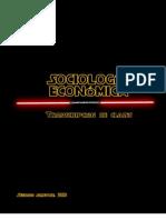 Soc. Economica Apuntes