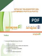 Sinapse Energía_presentación