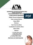 Protocolo lactancia (borrador)