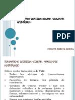 TVM prehospitalario