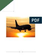 BUS101 Report on United Airways (BD)