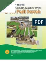 PTT Padi Sawah