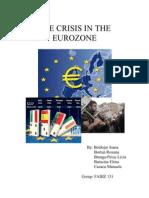 Branga-Peicu Livia Group 131 Crisis in Eurozone2