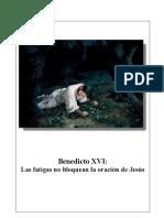 14. Las fatigas no bloquean la oración de Jesús - Benedicto-XVI