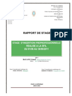 Rapport Lionel[1]