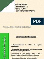 Zoologia Dos In Vertebra Dos (2)