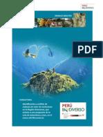 Turismo Amazonas