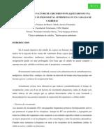 PRP en Veterinaria