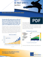 PVPT Fact Sheet Future of Market