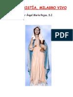 Eucaristía, Milagro Vivo