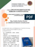 Principios Fund Amen Tales Del Derecho Constitucional