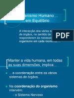 Organismo Humano- equilíbrio