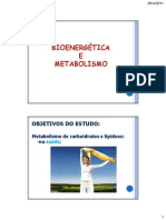 Metabolismo de Carboidratos22010