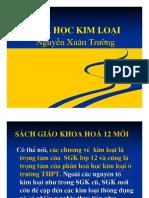 Nguyen-Xuan-Truong-Hoa-Hoc-Kim-Loai