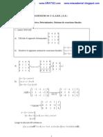 Ejercicios Resueltos de Matrices y Determinantes,Sistemas de Ecuaciones