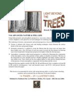 com V01 - Light Beyond the Trees