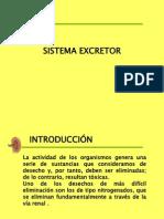 sitemaexcretor