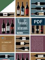 Vinos Mexicanos 2006