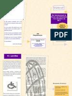 Folheto_dia internacional da pessoa com deficiência