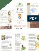 Plantacion Palazuelo-1