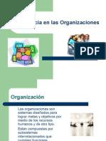 Importancia en Las Organizaciones