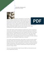 Manfaat Bawang Putih Pada Kesehatan