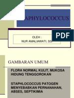 Staphylococcus Sp