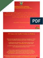 Julien Dupuy - Proyecciones para la Detección Precoz y Control del Cáncer de Cuello Uterino en El Alto, Bolivia