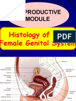 Histology of Female Genital System for Reproductive Module