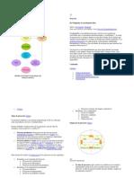 Descripciones del método científico