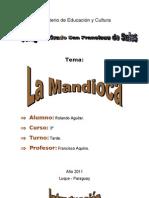 La Mandioca