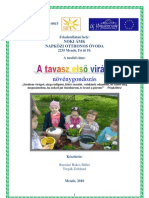 tavaszi_ viragok