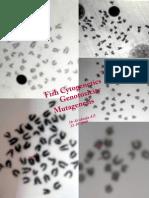 Fish Cytogenetics, Genotoxicity and Mutagenesis.  (5-12-1998)