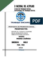 Promocion Social..Propuesta