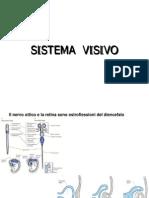 11-SISTEMA_VISIVO_BN