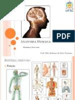 Introducao e Sistema Nervoso Central