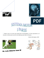 Sistema Motor 1