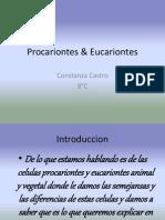 Procariontes & Eucariontes