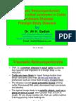 Traumatic Reticuloperitonitis by Ali Sadiek