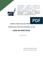 GUIA PRACTICUM1cast